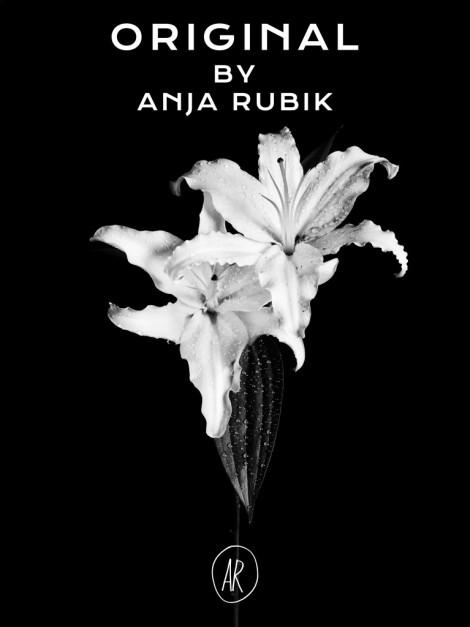 anja-rubik-original-campaign
